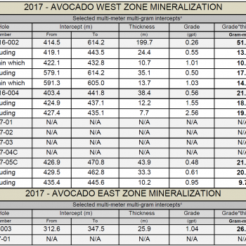 Avocado drilling summary